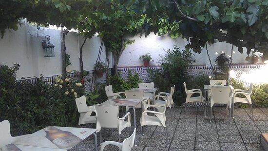 Bar Los Frutales. Casa Antonio