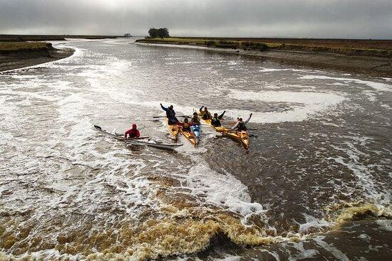 Limosa Kayak Expediciones