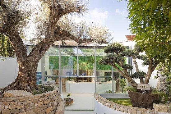 La Posidonia, Spa, Ibiza