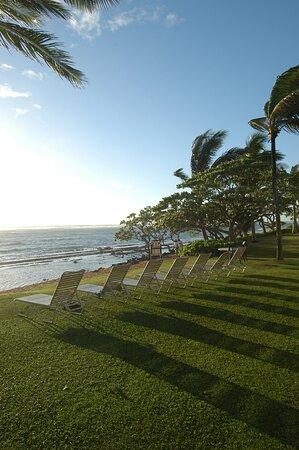 Beach - Kapaa Shore