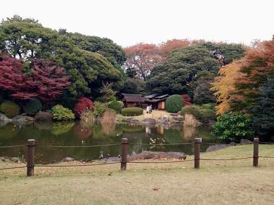Tokyo National Museum Garden