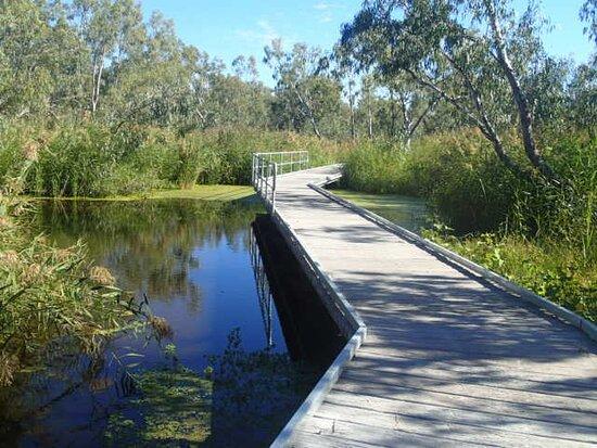 Warren, Úc: Beautiful boardwalk