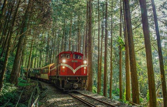 阿里山森林铁路