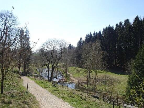 Grewelthorpe, UK: Lovely walks throughout the garden