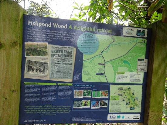 Fishpond Wood