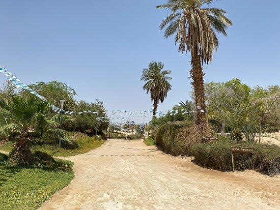 Sapir Park