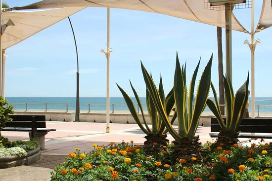 Paseo Marítimo de Estepona, a charming place to stroll