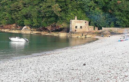 Elnberry Cove