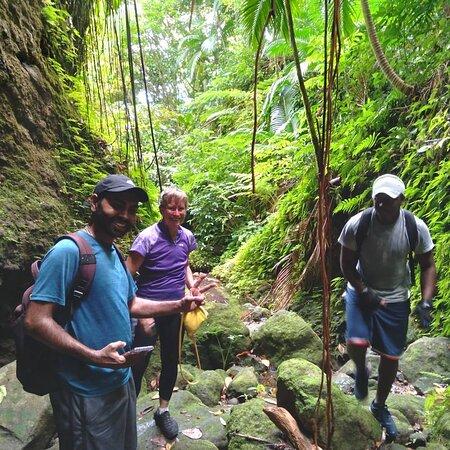 Nevis Waterfalls Hike