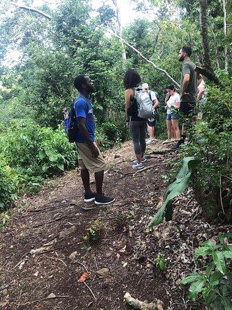 Nevis: Montravers Forest Hike/Walk
