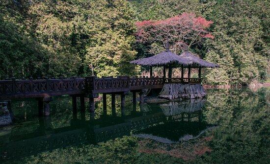 อาหลี่ซาน , เขตเจียอี้ : Sister Ponds