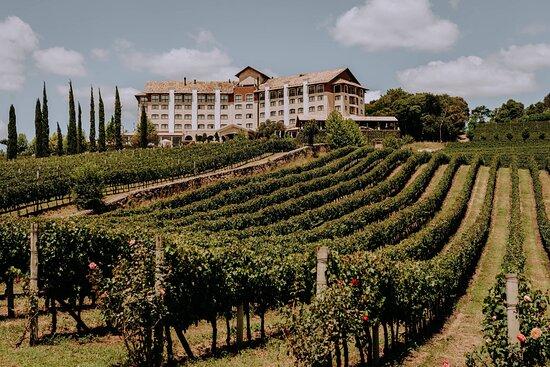 Hotel & Spa do Vinho, Autograph Collection