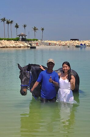 Most Amazing Equestrian Experience in Dubai