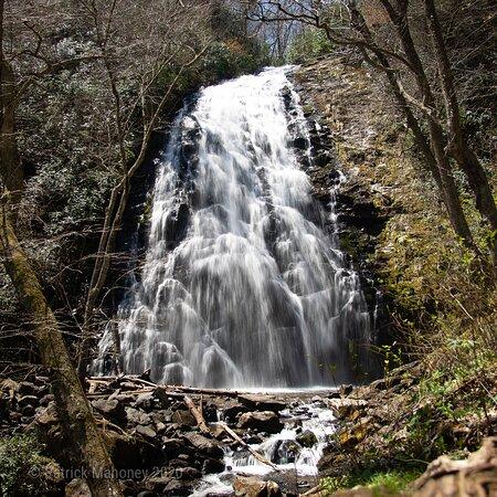Grassy Creek, Caroline du Nord: Falls in spring before much of the vegetation has bloomed.
