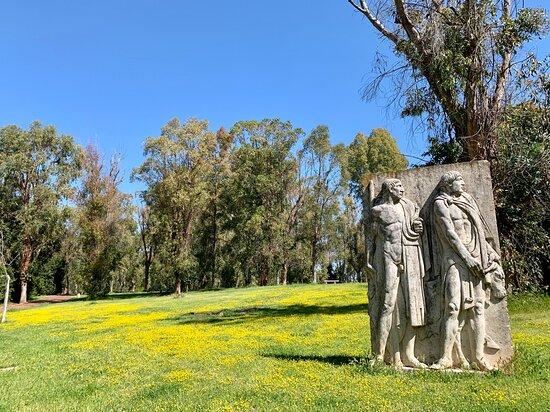 Parco degli Eucalipti