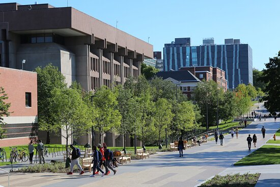 Bird Library located at Syracuse University.