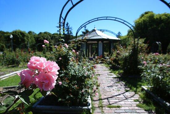 Thornden Park & the rose garden.