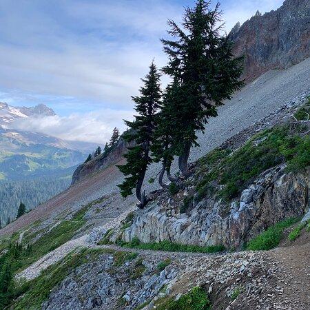 Washington: Plummer Peak