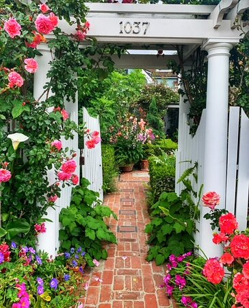 gorgeous flowers in front of a home hidden on the back streets of Coronado Village
