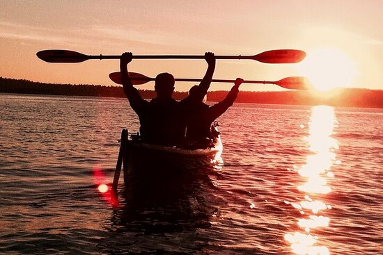 Small Group Sunrise Kayak Tour with Coffee on the Beach