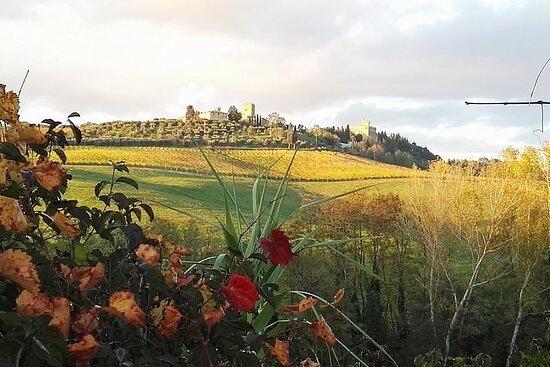 Monteriggioni-billede