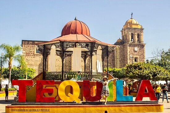 Guadalajara to Tequila - Private Transfer with English-speaking driver