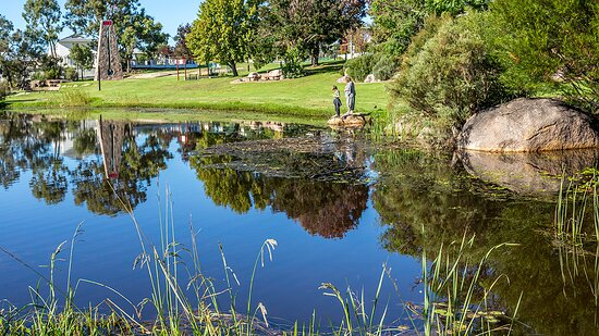 Pet friendly Stanthorpe.  Visit the Lions Park at Quart Pot Creek. Beautifully kept park, walking tracks, seating and picnic areas.