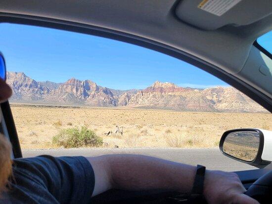 Área de conservación nacional de Red Rock Canyon: .