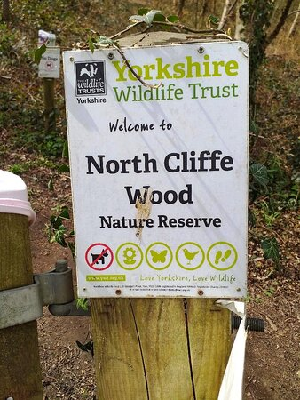 North Cliffe Wood Nature Reserve Entrance