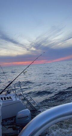 Sunset & Dolphin Catamaran Cruise in Panama City Beach: Beautiful view