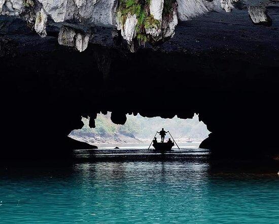 Blue Swimmer Travel