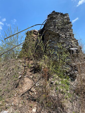 side view of the ruin .. covered with bushes and crumbling away exposed to the elements.