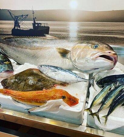 """il pesce """"vivo"""" esposto all'ingresso"""