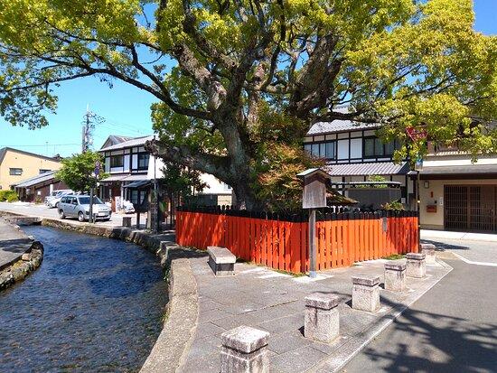 Fujinokinoyashiro Shrine