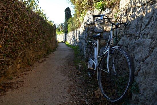 Bordighera, Italy: percorso