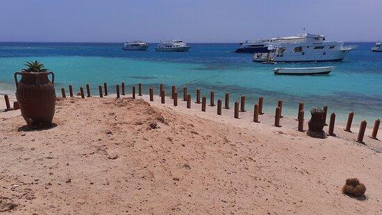 Paradise Island: paradise beach