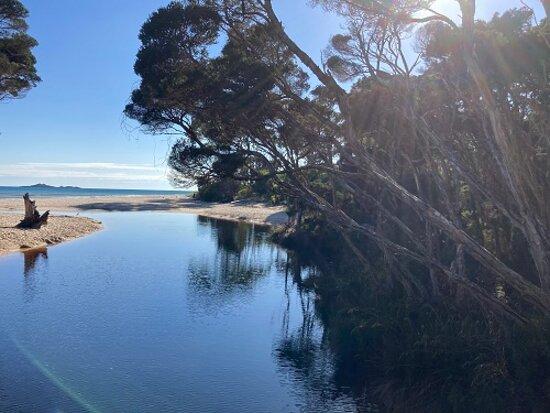 Sisters Beach, Austrália: The Creek