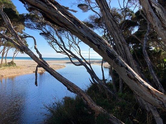 Sisters Beach, Austrália: Out To Sea