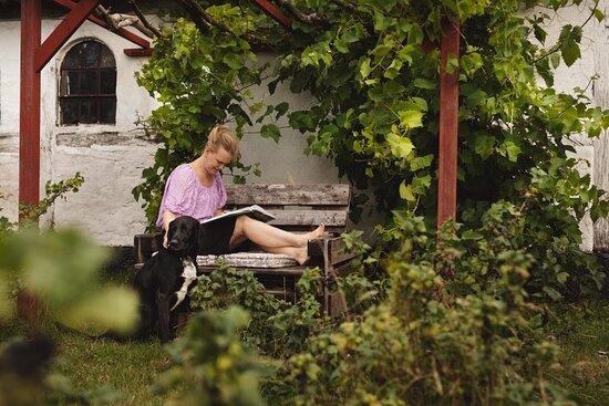 Hårlev, Danmark: Afslapning i bærhaven