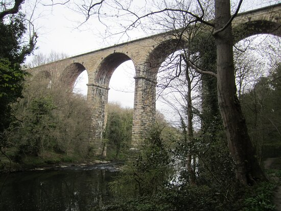 County Durham, UK: View of viaduct from path