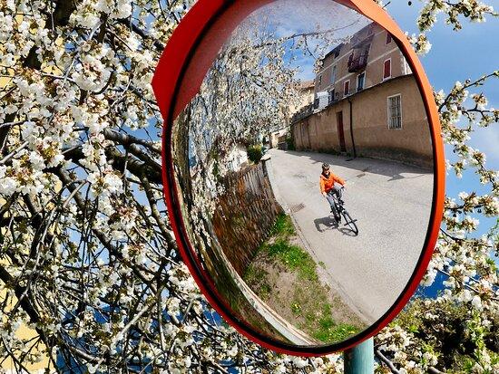 In bici tra i meli in fiore sulla ciclabile più bella del Trentino!
