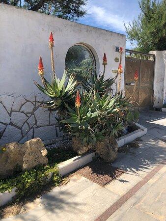 Marausa, Italia: Un'aiuola multicolore ....