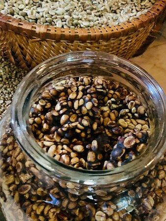 Weasel coffee ( cà phê chồn
