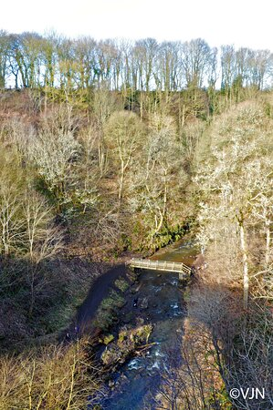 View from the top of Causey Arch bridge.