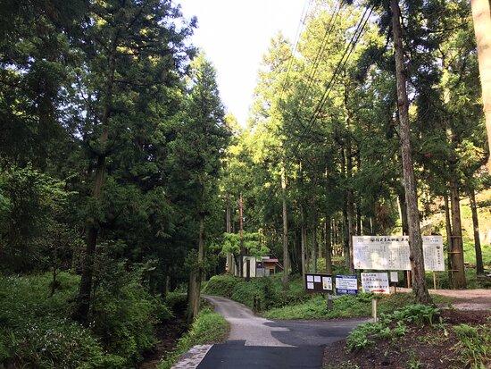 Iwami Ginzan Ryugenji Mabu