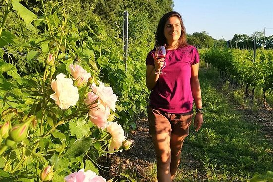 Trekking tra i vigneti e degustazione di vini a Custoza
