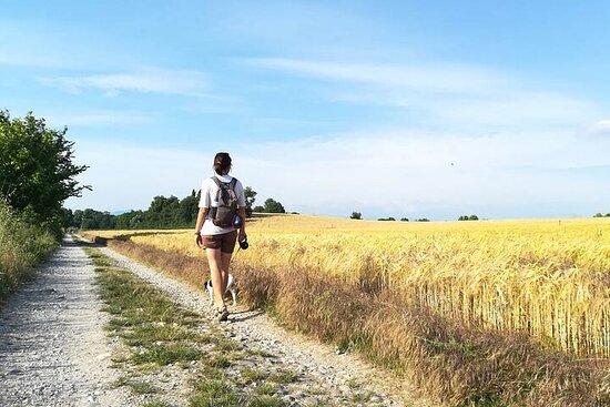 Trekking naturalistico di mezza giornata a Custoza con degustazione