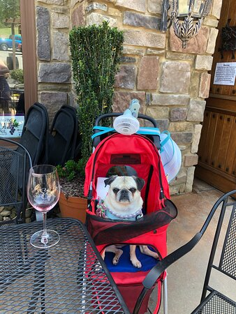 Dog Friendly, Excellent Wine Great Ambiance