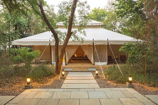 Aman-i-Khas, India - Tent Interiors