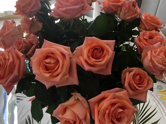 Castelluzzo, Italia: Rose ..... rose  !!